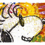 tom everhart pop star
