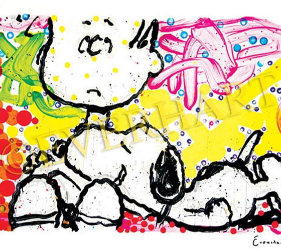 tom everhart super sneaky